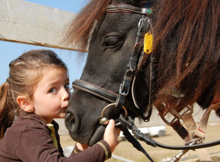 little girl kissing pony on the nose